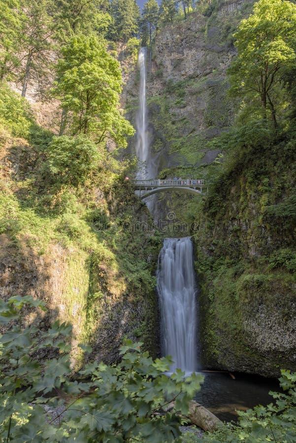 Multnomah baja en el verano Oregon imagen de archivo libre de regalías