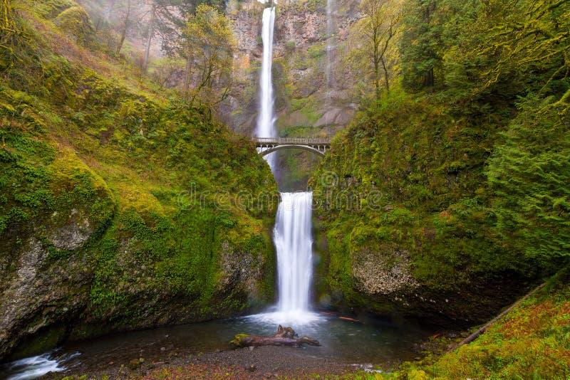 Multnomah cade da Benson Bridge nella stagione primaverile dell'Oregon immagine stock libera da diritti