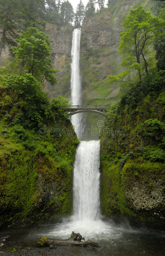 Multnomah cade l'Oregon immagine stock libera da diritti