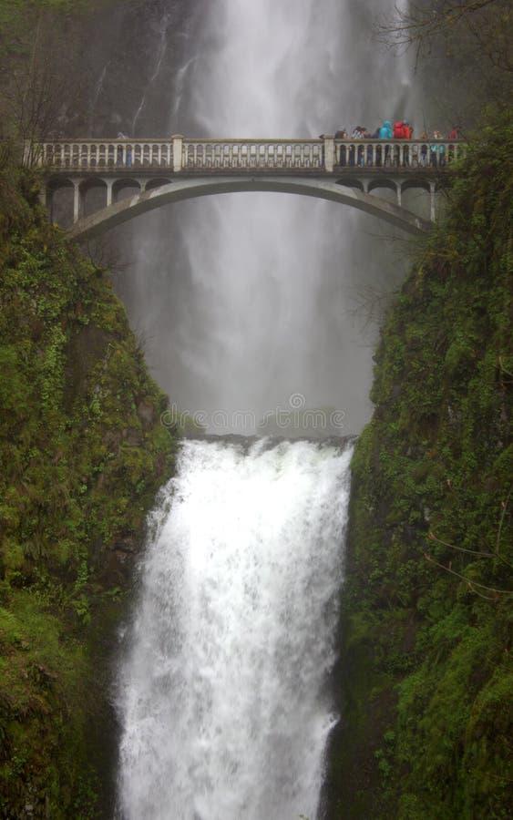 Multnomah cai cachoeira e ponte foto de stock