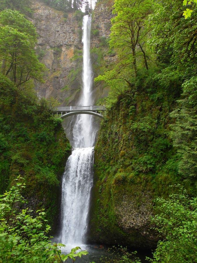 Multnomah cai desfiladeiro do Rio Columbia perto de Portland Oregon fotografia de stock