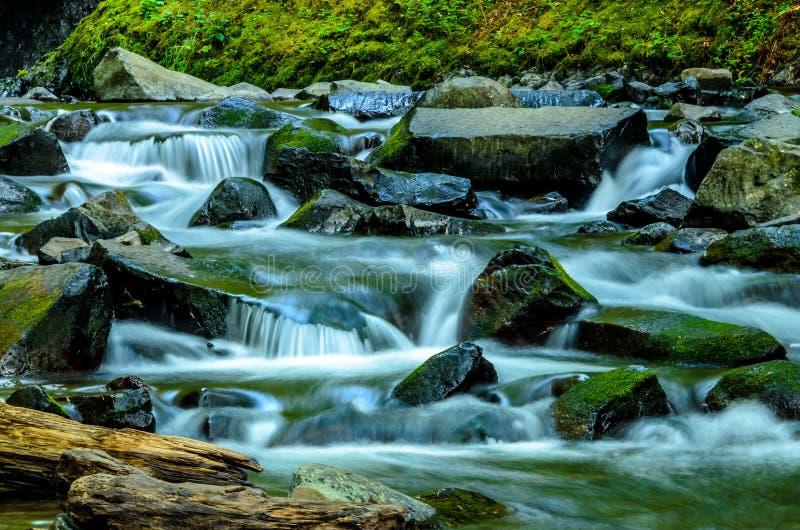 Multnomah cai em Portland Oregon imagem de stock royalty free
