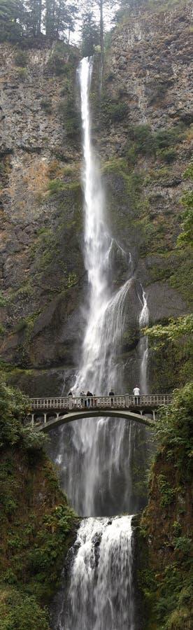 Multnomah cai panorama vertical. foto de stock