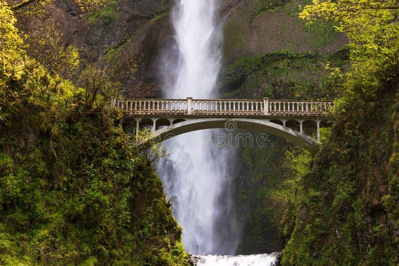 Multnomah cai perto da ponte fotografia de stock