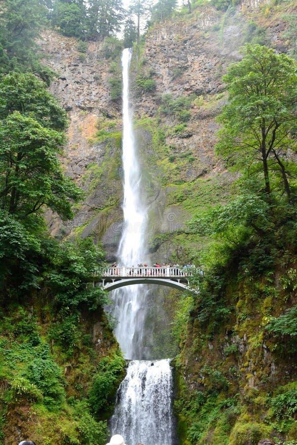 Multnomah fällt Oregon stockfotos