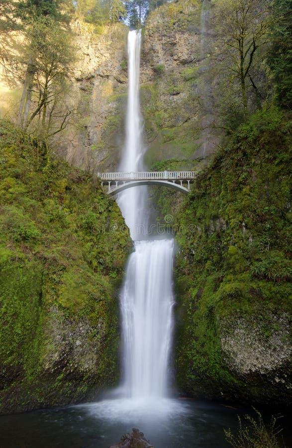 Multnomah fällt in Oregon-Staat stockfotos