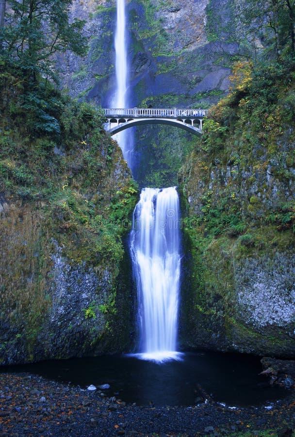 Multnomah Falls Stock Images