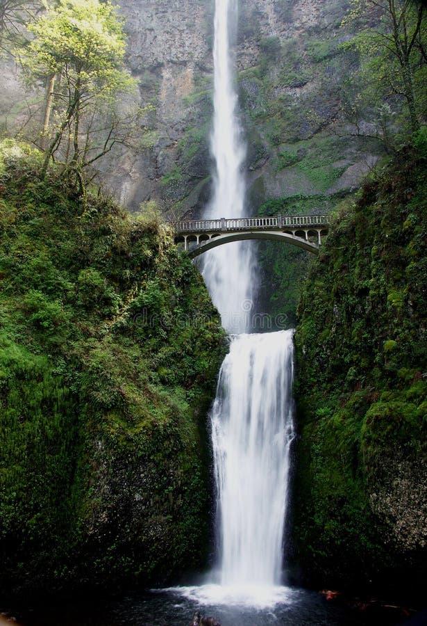 Download Multnomah Falls stock image. Image of spring, water, powerful - 119255