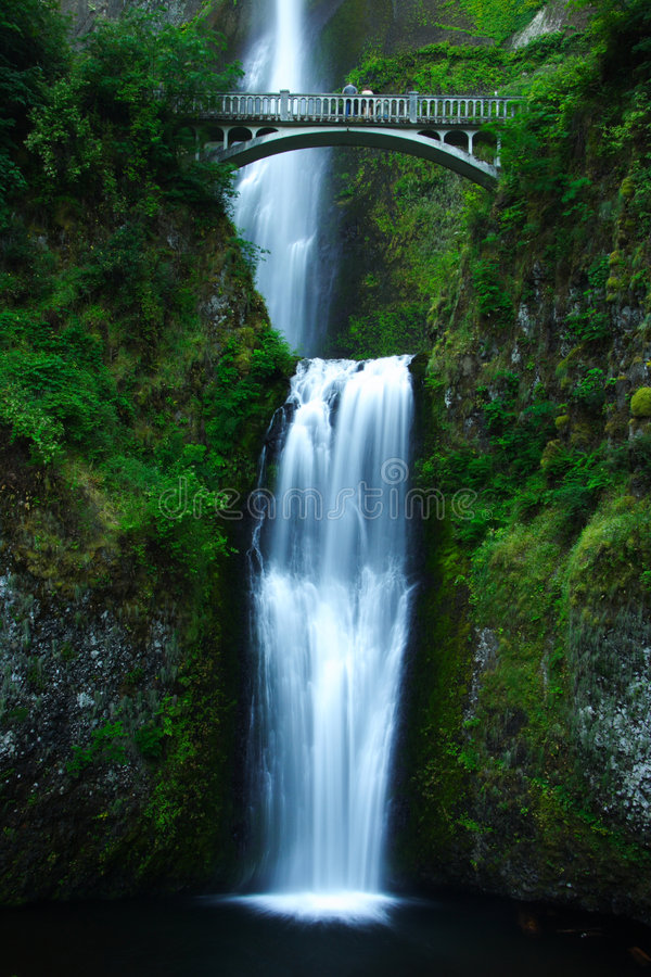Download Multnomah Falls stock image. Image of water, nature, forest - 7107971