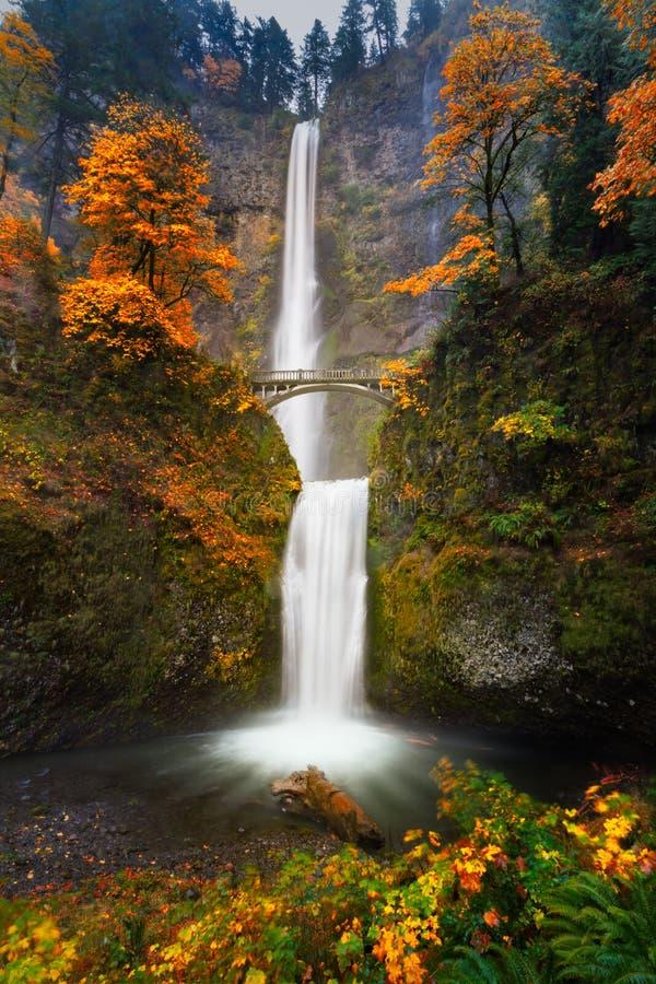 Multnomah Falls in Autumn colors stock photo