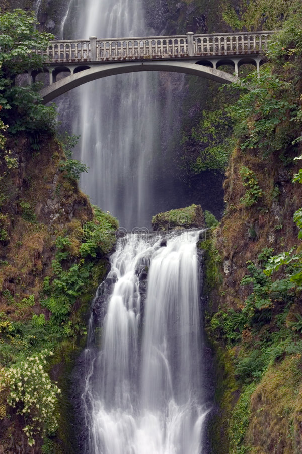 Download Multnomah Falls With Bridge Stock Image - Image of bridge, waterfall: 39923