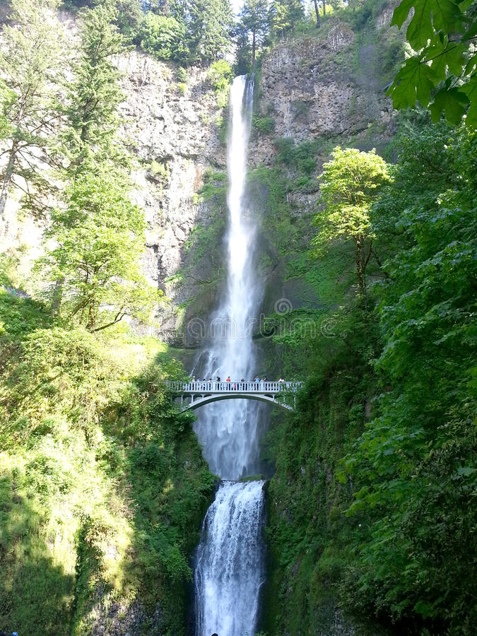 Multnomah Falls and Bridge royalty free stock image