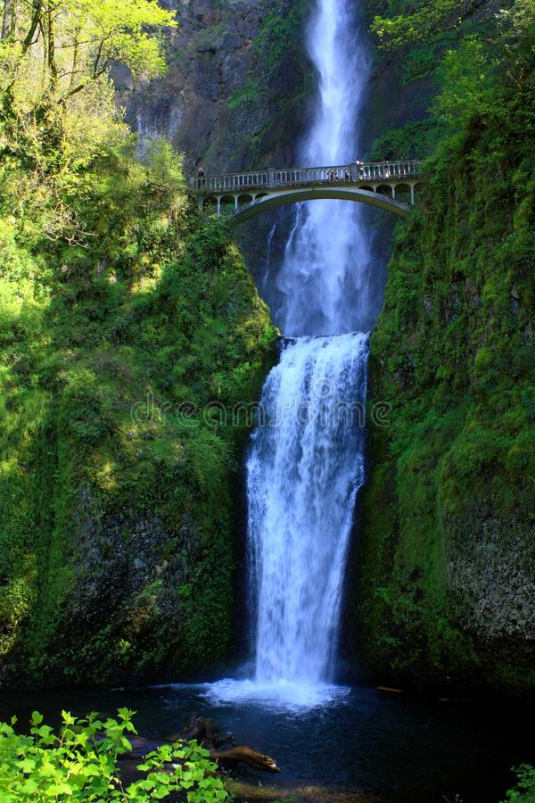 Upper and Lower Multnomah Falls with Benson Footbridge, Columbia River Gorge, Portland, Oregon. Multnomah Falls in the Columbia River Gorge near Portland, Oregon stock photos