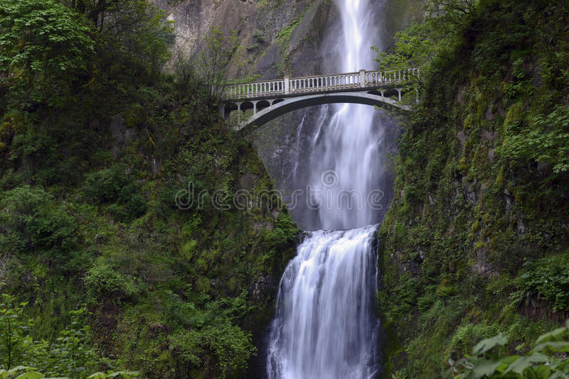 Multnomah Falls and foot bridge in lush green setting near Mount Hood and Portland Oregon in the Columbia River Gorge region. USA royalty free stock photography