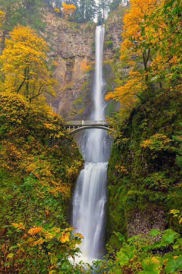 Free Multnomah Falls In Fall Season Colors In Oregon America Stock Image - 102675411