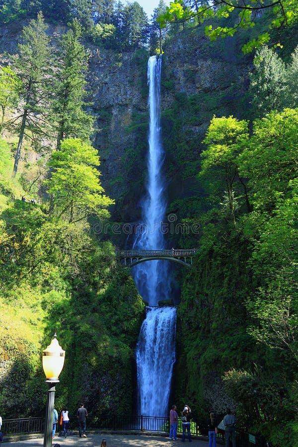 Multnomah più basso e superiore cade dal punto di vista più basso, la gola del fiume Columbia, Oregon immagini stock