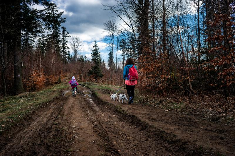 Mum with a daughter and dogs on a mountain forest trip. royalty free stock image