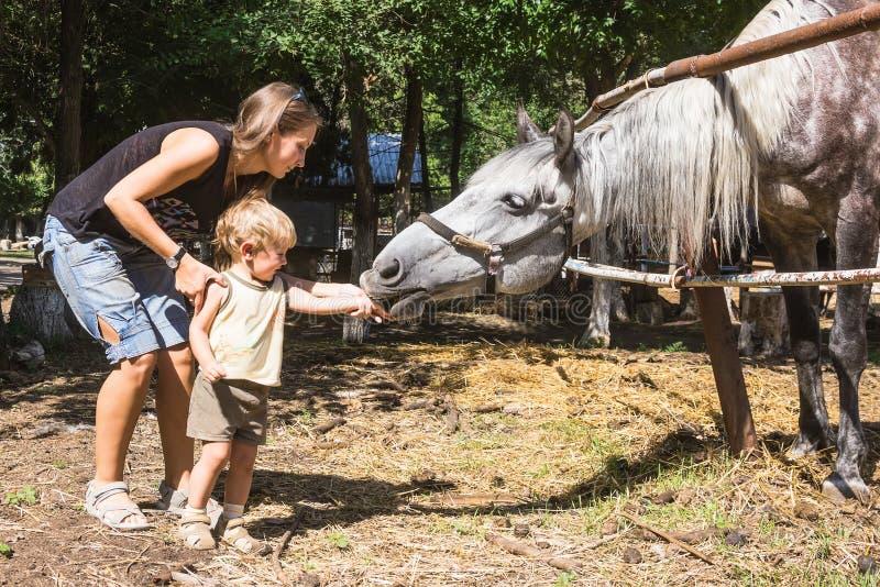 Mum met paard het van twee jaar van het kindvoer royalty-vrije stock foto's