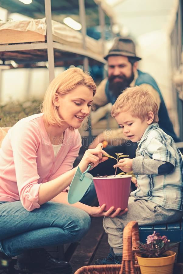 Mum showing her son tender leaves of small flower in hot pink pot while holding gardening spade. Family working together. Mum showing her son tender leaves of royalty free stock image