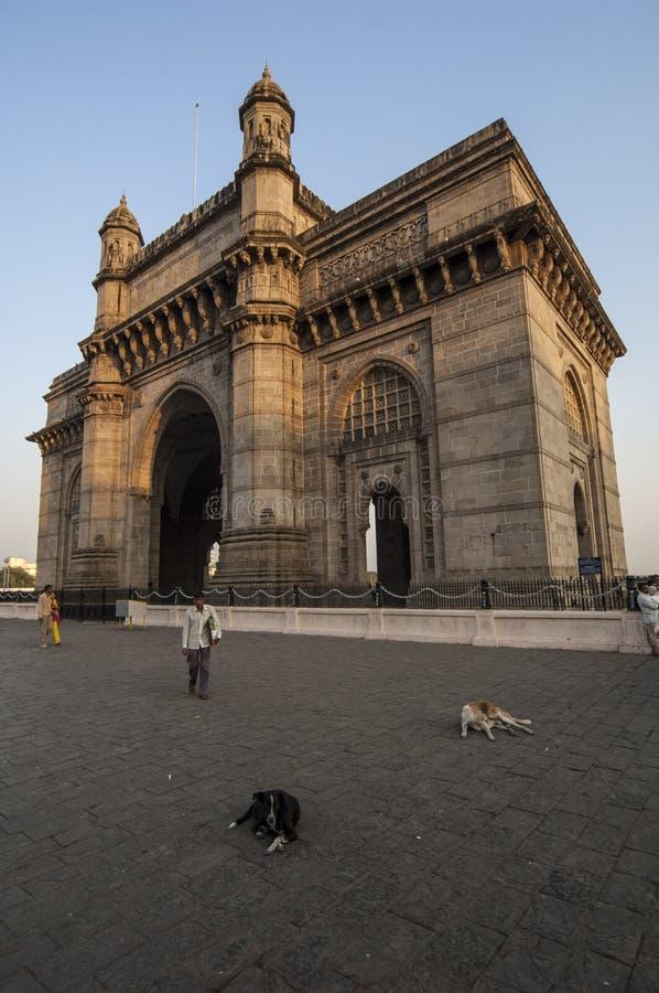 MUMBAI/INDIA 2007年1月19日-狗在Gatewa前面说谎 免版税库存照片