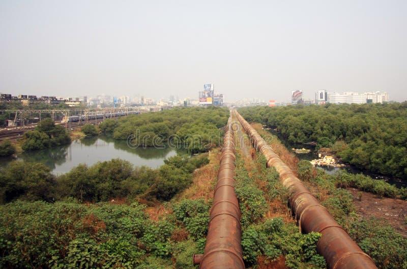 Mumbai, India - November 19, 2014: Van de Mumbaikrottenwijk 'dharavi' mening die naar swampland en waterpijpleidingen kijken royalty-vrije stock foto's