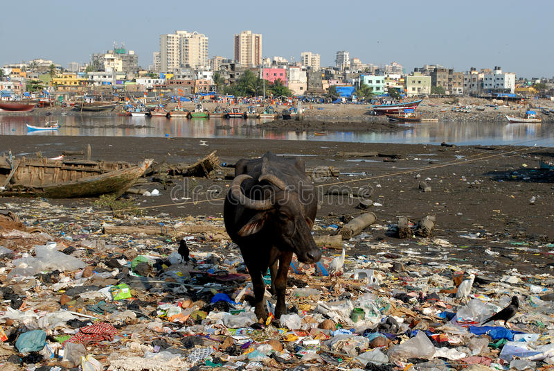 Population Of Mumbai 2018