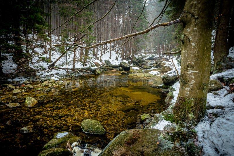 Mumlava河的镇静和清楚的水冬时的 库存照片