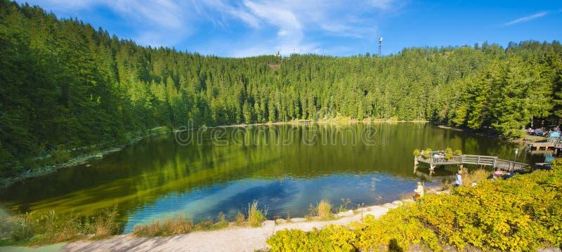 Mummelsee, _Black Bos, Baden-Wuertemmberg, Duitsland stock fotografie