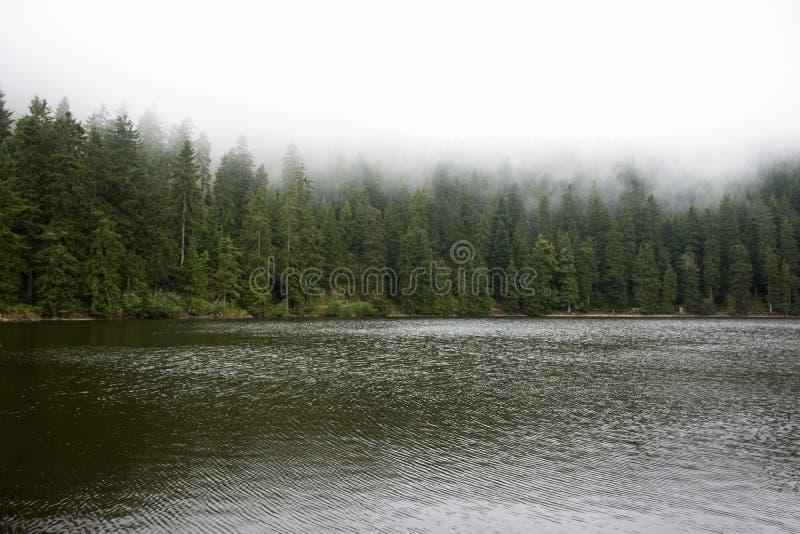 Mummelsee See im Schwarzwald oder Schwarzwald bei Deutschland lizenzfreie stockbilder