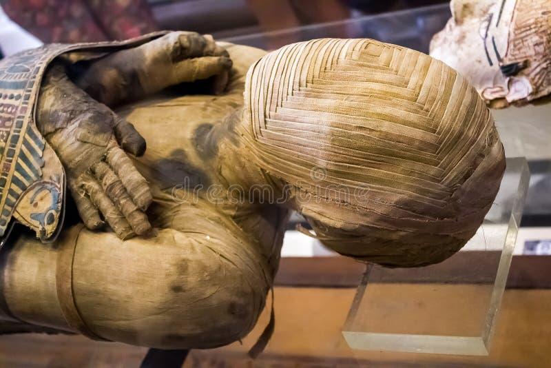 Mummia di un uomo immagine stock