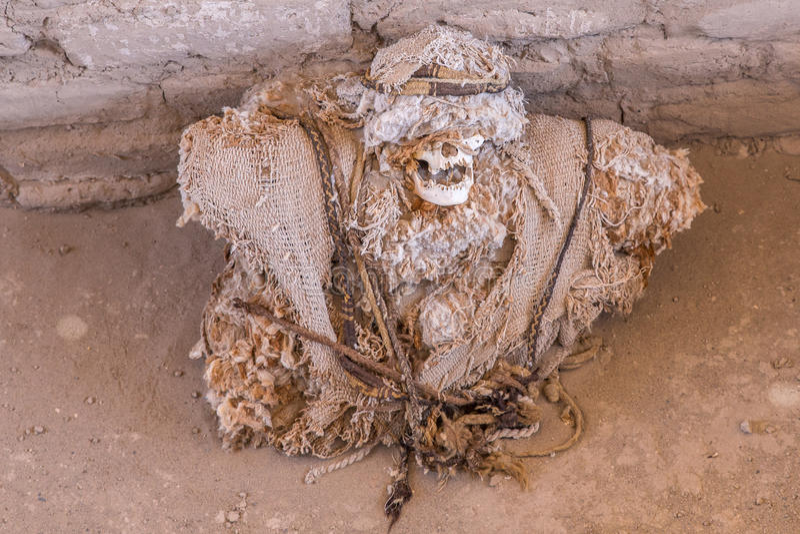 mummy imagem de stock royalty free