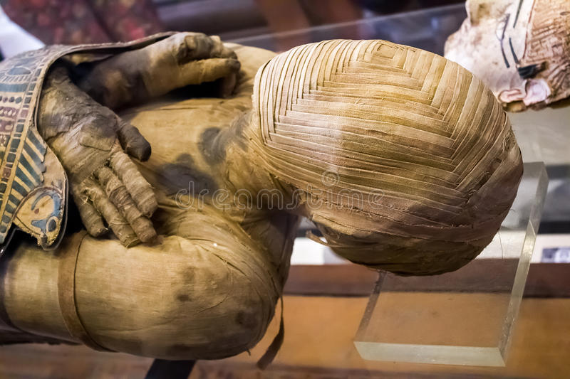 Mummy of a man stock image