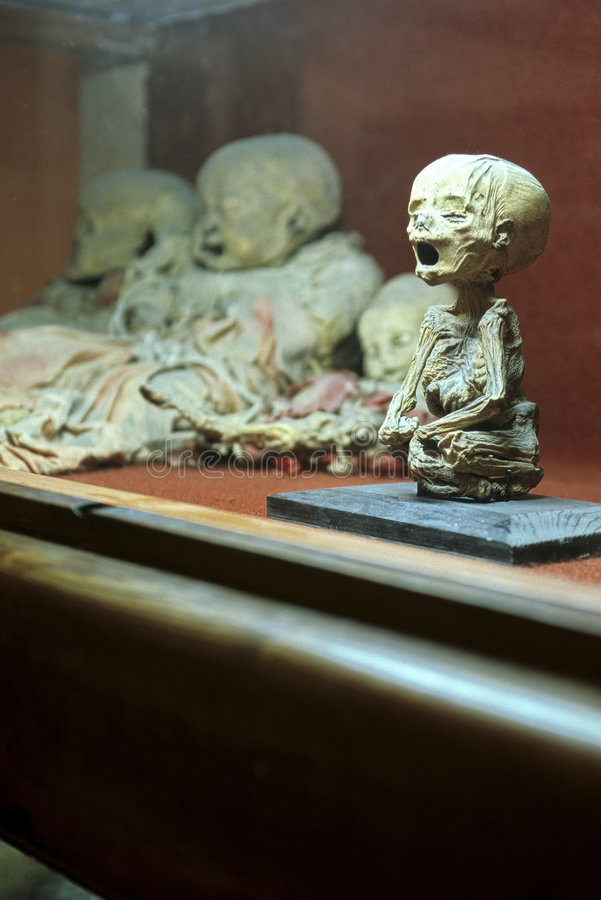 Mummy museum- Guanajuato, Mexico. Mummies in the Museo de los Momias in the colonial mining town of Guanajuato, Mexico stock image