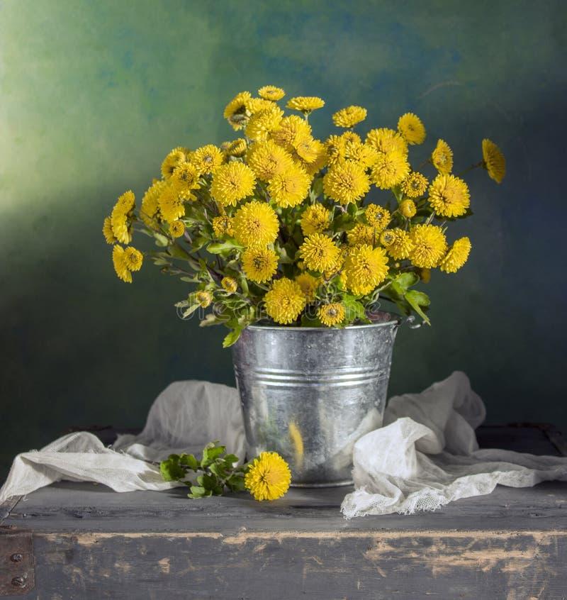 Mums amarelos bonitos imagens de stock royalty free