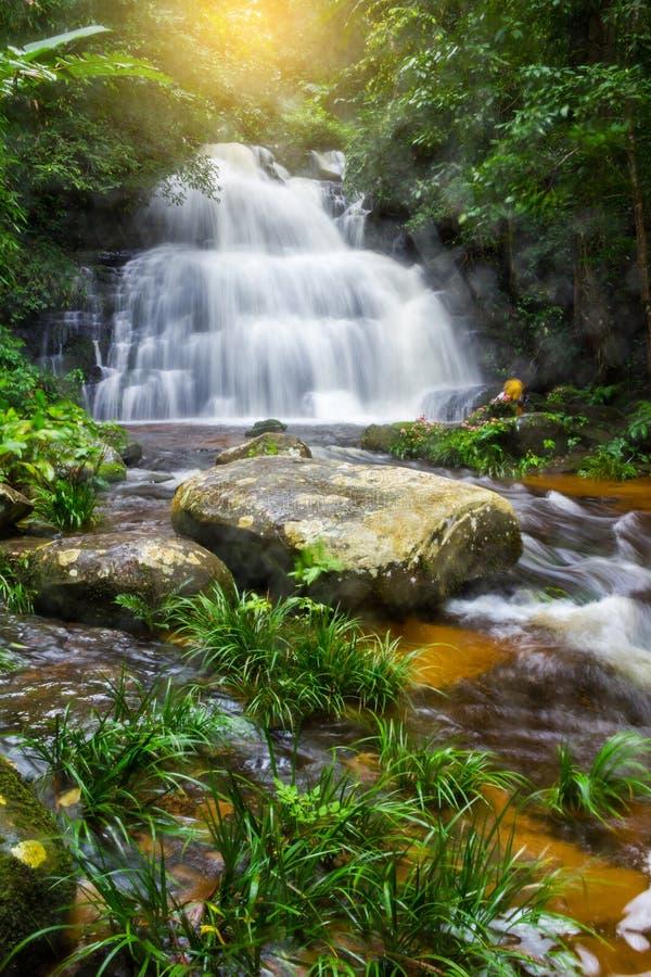 Mun Dang Waterfall in diep bos vers groen regenseizoen in Tha stock afbeeldingen