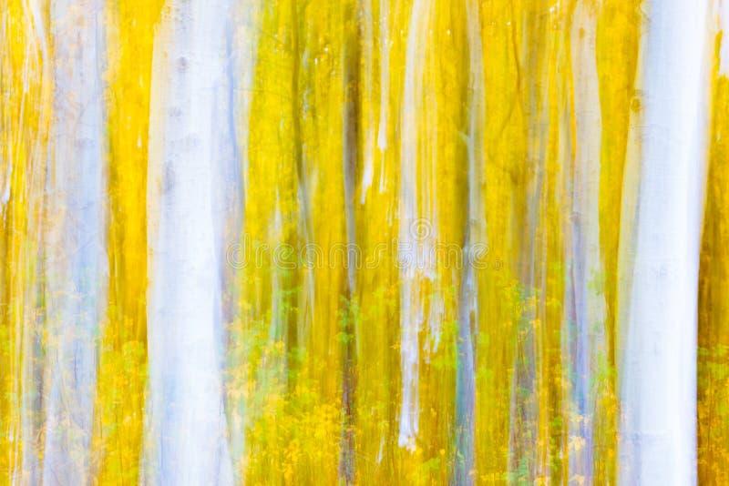 Munch's Aspens stock images