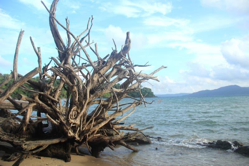 Munda Pahad Beach,Andaman-1. royalty free stock photography