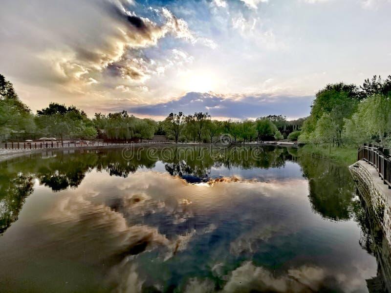 Mundo salvaje Jinan, China del lago @ foto de archivo libre de regalías
