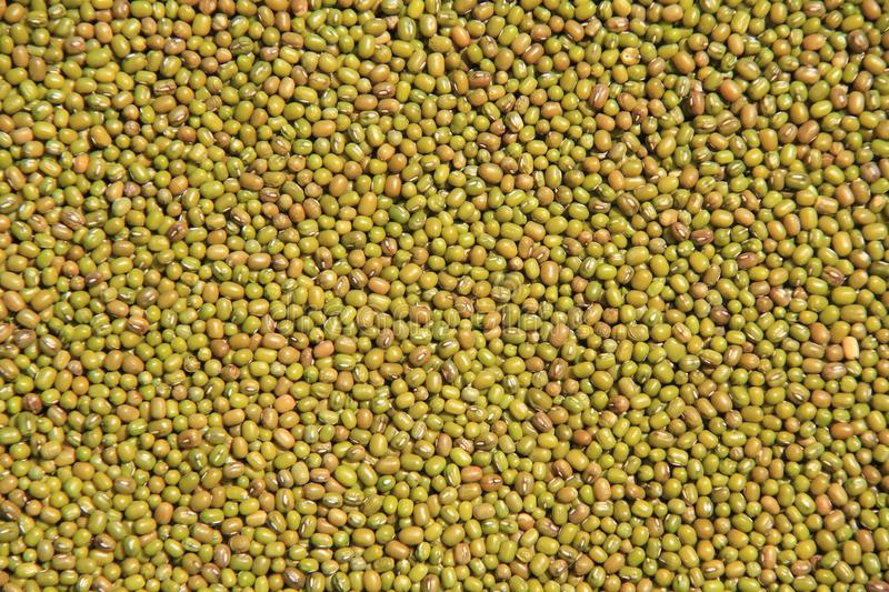 Mung bead. Mung bead background. Background material.Food. royalty free stock photography