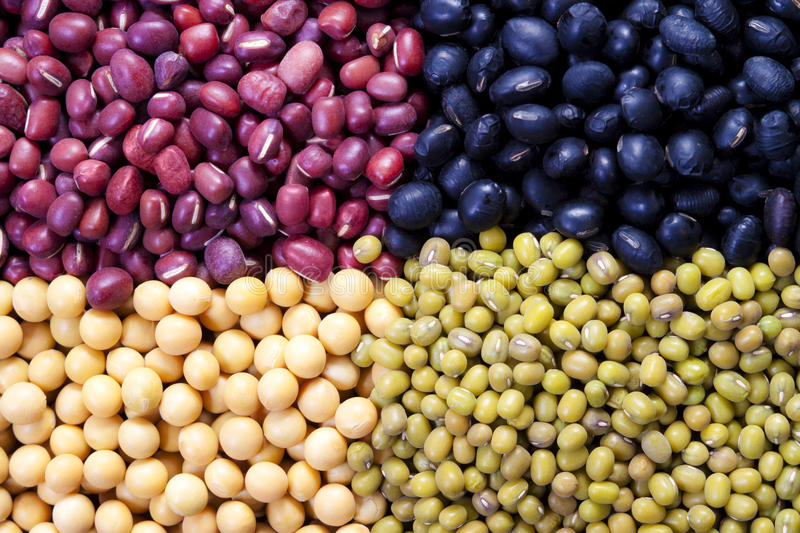 Mung bean and soybean royalty free stock image