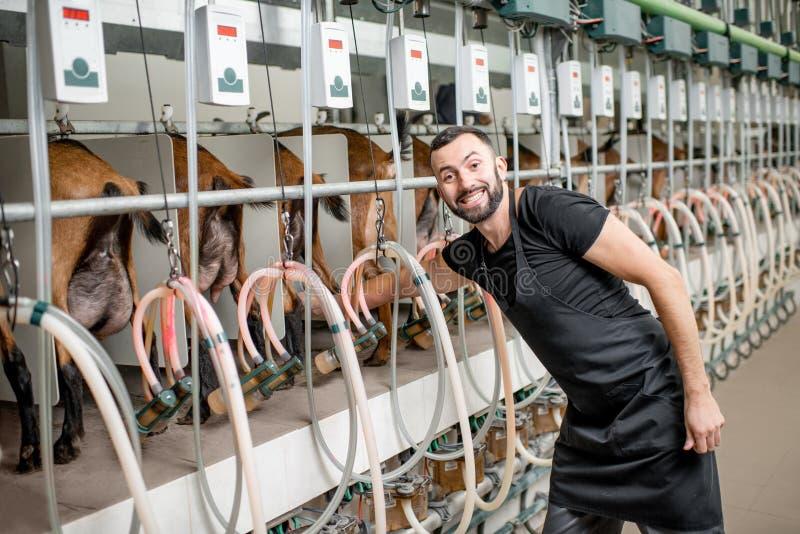 Mungitrice di funzionamento dell'uomo all'azienda agricola della capra fotografia stock libera da diritti
