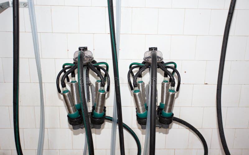 Mungitura dell'attrezzatura in impianto lattiero immagini stock libere da diritti