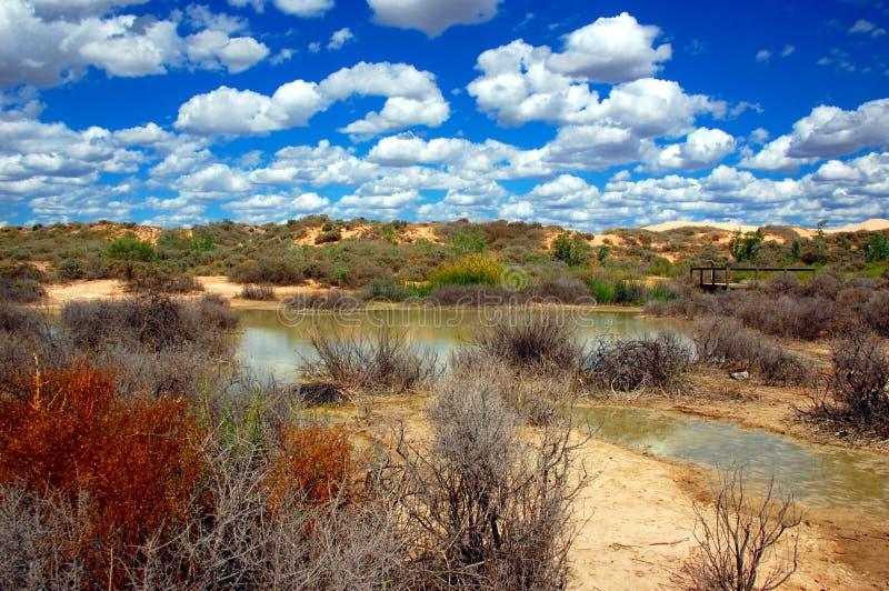 Mungo National Park, Australien lizenzfreies stockfoto