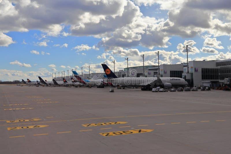 MUNICH, BAVIERA, ALEMANHA - 13 DE MARÇO DE 2019: Aviões de Lufthansa em tipos diferentes de libré no aeroporto de Munich imagens de stock