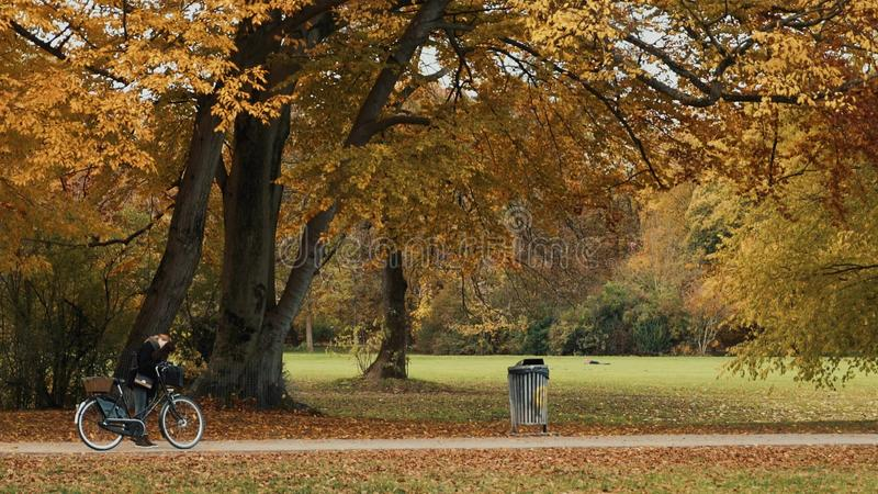 MUNICH, GERMANY, November 19, 2019: Locked down real time wide shot of a young girl with a Bicycle walking with a dog in royalty free stock images