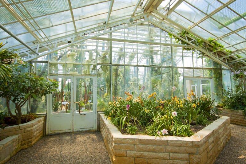 Munich, Invernadero De Las Orquídeas Del Jardín Botánico Imagen de ...