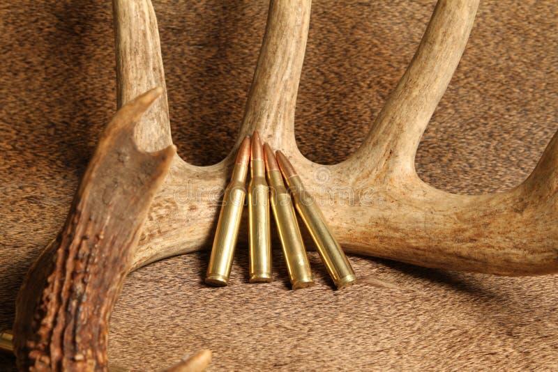 munición de 270 rifles fotos de archivo