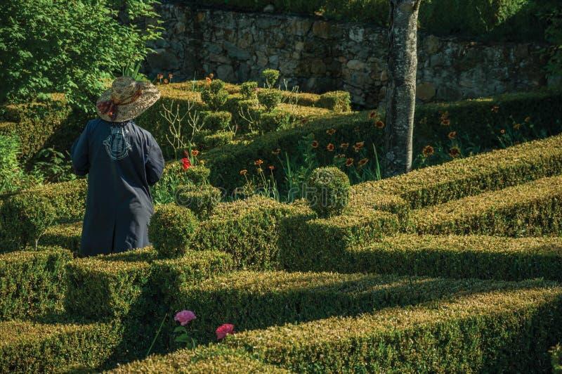 Municipal employee gardening a lush green yard stock images