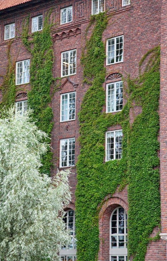 Municipio a Stoccolma fotografia stock