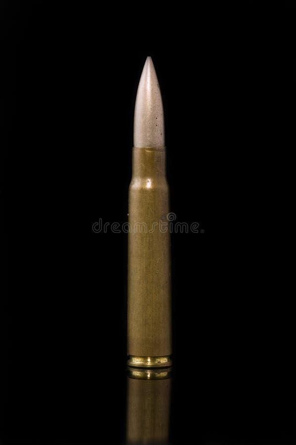 Download Munizioni del fucile fotografia stock. Immagine di resistenza - 7315474